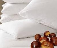 almohada de castañas
